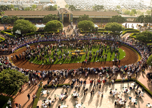 Paddock area at Santa Anita during Breeders' Cup. Photo: Benoit Photo.