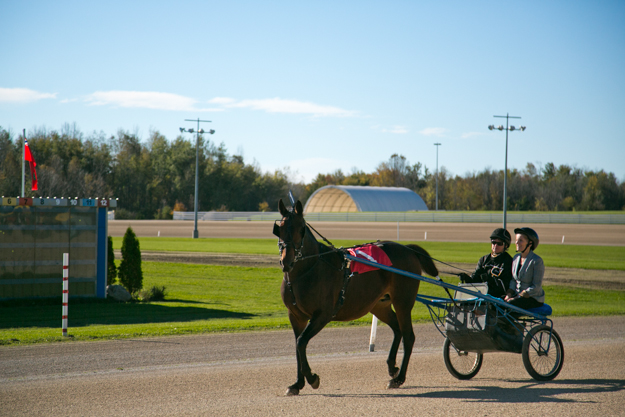 Premier Wynne rides in a sulky while on a visit at Mohawk Racetrack. Photo:  Queen's Printer for Ontario.