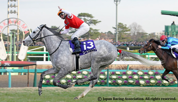 Gold Ship after crossing the finish at the 2012 Arima Kinen. Photo: Japan Racing Association.