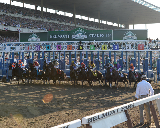 The start of the 2014 Belmont Stakes. Photo: NYRA/Chelsea Durand