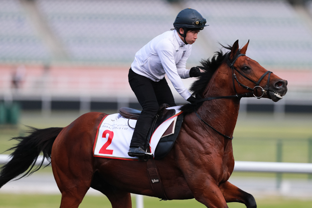 Akeed Mofeed on the track at Meydan. Photo: The Hong Kong Jockey Club.