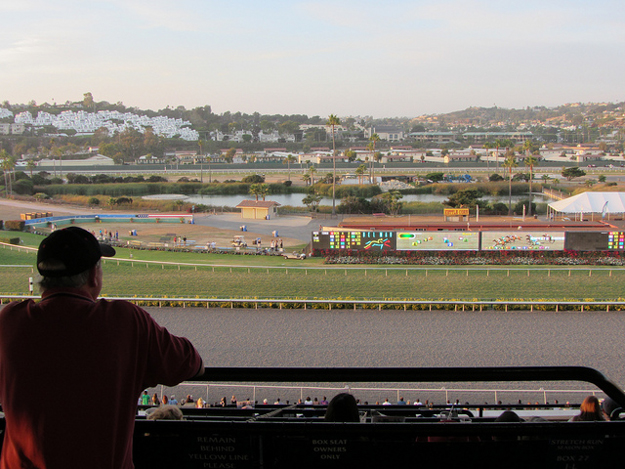 Before the renovation earlier this year, Del Mar's turf course was too narrow to accomodate 14-horse fields. Photo: Patty Mooney/Flickr.