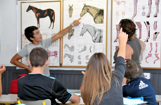 In addition to riding instruction, students at AFASEC also take classes on equine science. Photo via AFASEC