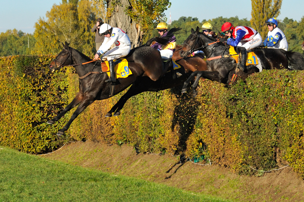 Velká Pardubická in the Czech Republic. Photo: David Tanecek (CTK via AP Images)