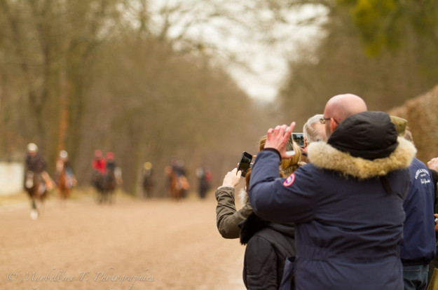 Arqana Racing Club owners watch their horses on the gallops. Photo: Maybelline T. Photographies/Arqana Racing Club
