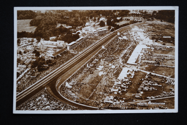 Aerial view of the Edwardian structures at Ascot. Photo: Cox Library.