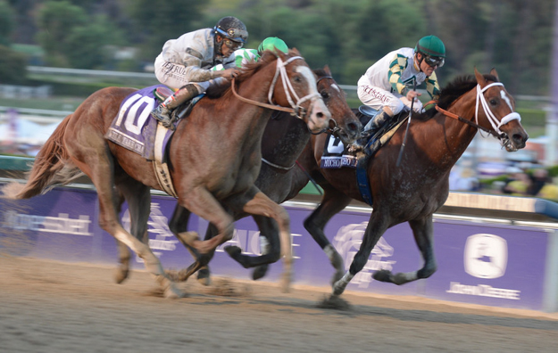 Mucho Macho Man edges out Will Take Charge and Declaration of War to win the 2013 Breeders' Cup Classic. Photo: Breeders' Cup Ltd./Weasie Gaines 2013.