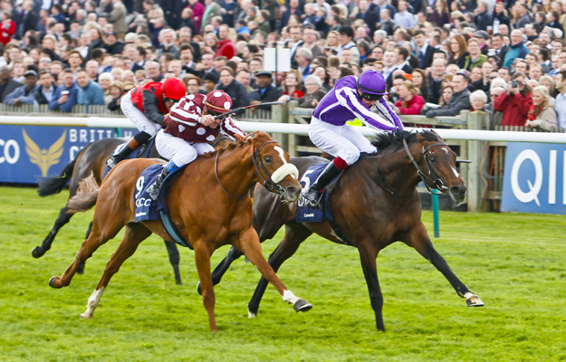 Camelot and Joseph O'Brien edge out French Fifteen to win the 2012 2,000 Guineas at Newmarket. Photo: Cranhamphoto.com