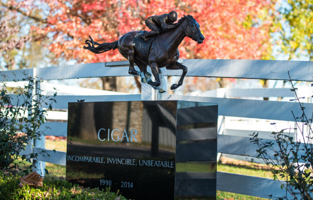 Cigar's final resting place, beside the paddock in which he enjoyed his retirement.  Photo via James Shambhu for the Kentucky Horse Park