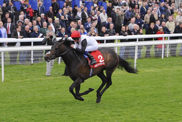 Golden Horn winning the Betfred Dante Stakes at York. Photo provided by York Racecourse.