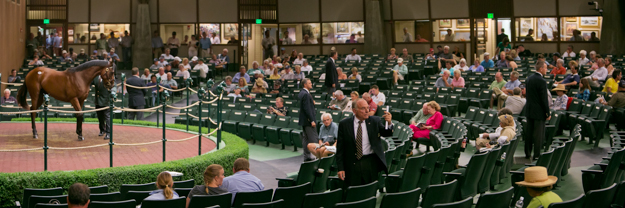 Keeneland 2013 September Yearling Sale. Photo: Keeneland.