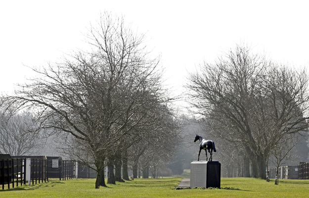 Statue of Mill Reef at the National Stud in Newmarket. Photo: RacingFotos.com
