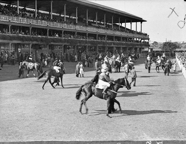 Horses in the Mounting Yard in front of the Members' Stand, extended 1907-14. Credit State Library of New South Wales
