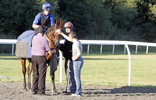 Farhh is comforted by Frankie Dettori and Steve Yarmy Dyble at Kempton for stalls schooling. Photo: RacingFotos.com