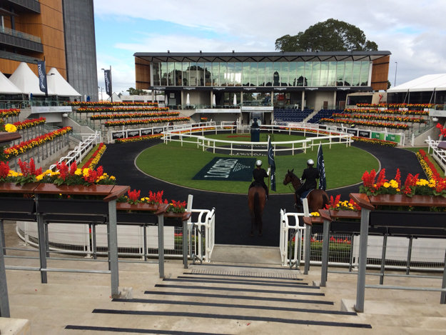 Theater of The Horse at Royal Randwick. Photo: Jessica Owers