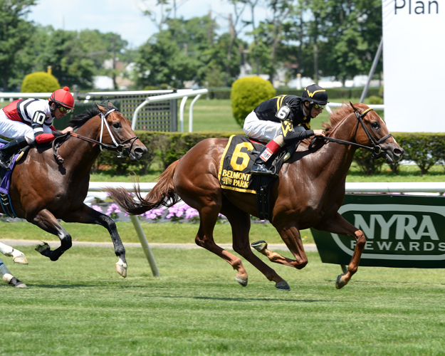 Undrafted winning the G3 Jaipur Invitational Stakes at Belmont Park. Photo: NYRA/Lauren King.