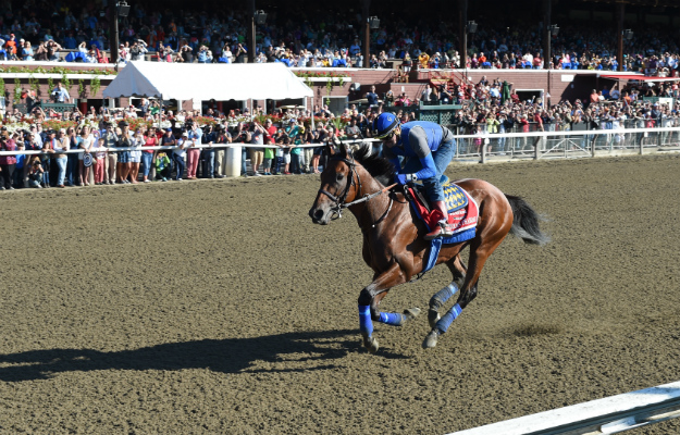 That amazing Friday: American Pharoah's workout the day before the Travers is watched by more than 15,000. Photo: NYRA