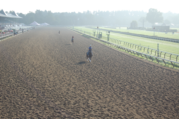 Morning training at Saratoga. Photo: Ashley Herriman.