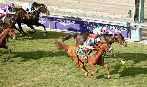 Main Sequence BC Turf 2014 Breeders' Cup Photo