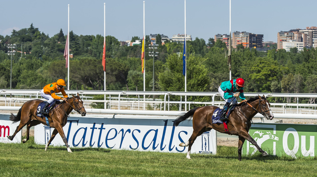 Noozhoh Canarias winning the Premio Tattersalls-Martorell at La Zarzuela Racecourse in June 2013. RacingFotos.com