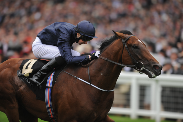 Declaration of War in the Queen Anne Stakes at Ascot Racecourse. Photo: 2013 Charlie Crowhurst/Getty Images.