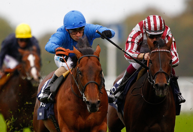 Farhh crosses the finish line in the 2013 QIPCO Champion Stakes right before Cirrus Des Aigles and Ruler Of The World. Photo: Alan Crowhurst/Ascot Racecourse.