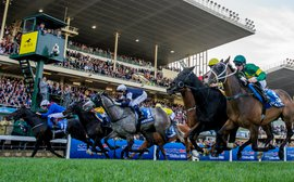 2014: The year that was in Australian racing