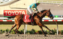 Late starts for 2-year-olds affecting strength of G1 staples