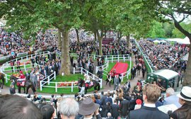 The global interest that makes the Arc an asset for French racing