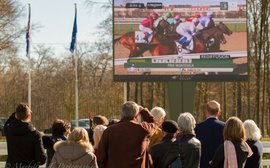 Arqana's new racing clubs point to a possible way forward for French racing