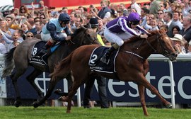 Superstar performers join European stallion list for 2015