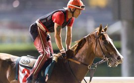 Chrome at the World Cup: Art Sherman is relishing the challenge - and charming Dubai