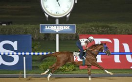 Advantage California Chrome as US prospects look promising for Dubai World Cup night