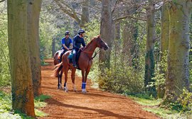 Formidable rivals lying in wait for California Chrome at Royal Ascot