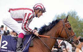 Super Cirrus Des Aigles bids to finally get it right in Hong Kong