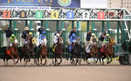By the numbers: Productive KY Derby preps