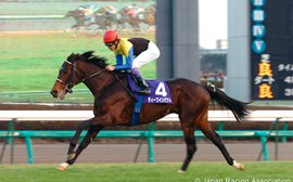 My favorite racehorse: Deep Impact