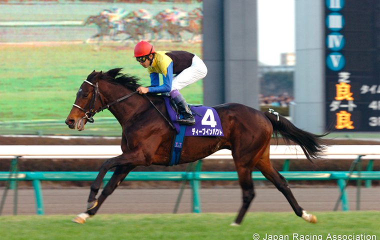 The ten greatest Thoroughbreds in Japanese racing history | Topics: Lord Kanaloa, Orfevre, Almond Eye, Deep Impact, Gentildonna | Thoroughbred Racing Commentary