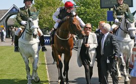 All eyes on Free Eagle as Moyglare Stud looks to build on Haefner's legacy