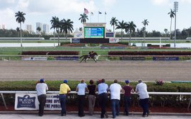 Electricity in the air as Florida Sale's switch to Gulfstream pays off