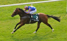 Memories of Giant's Causeway as a potential new Coolmore star is readied for classic glory