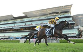 Sydney's The Championships racing into 2015