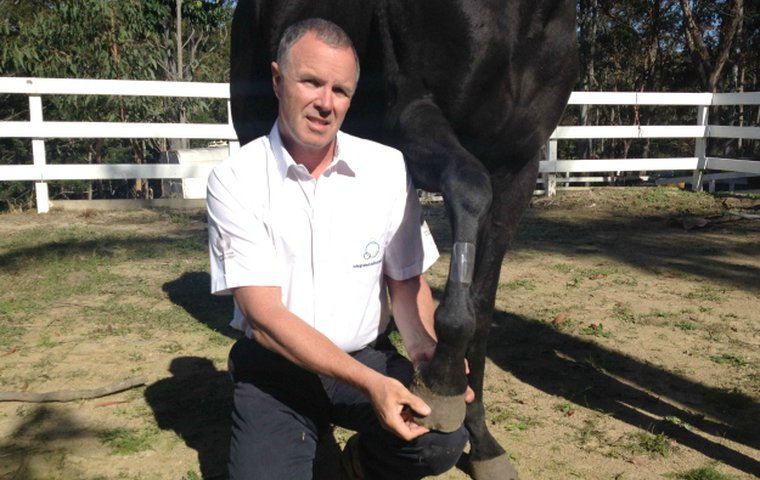 patch integrated bute tpm relief animal alternative pain health safe could neely shin ceo robert horse shows