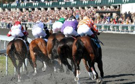 Union between KY horsemen, tracks shows evolving mindset on aftercare