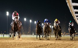 How to win on the new dirt surface at Meydan? Doug Watson has answers