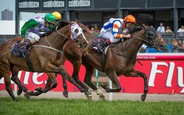 Flemington's Queen Elizabeth Stakes: Extracting a future Cup winner