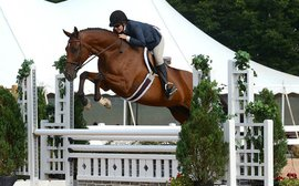 True to her roots, hunter-jumper Croll keeping focus on Thoroughbreds