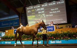Often copied, rarely equaled: Magic Millions