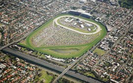 Drawing the world to the Cox Plate