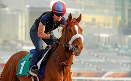 Main Sequence's 'antsy' behaviour keeps Motion on his toes as Dubai spectacular looms